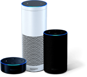 Amazon Voice products lead market