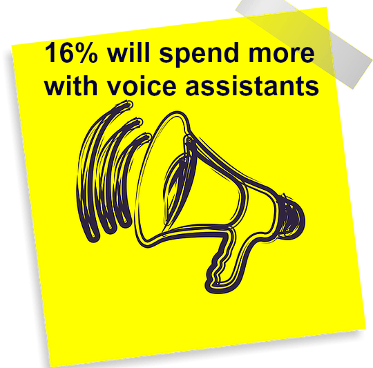 voice shopping