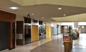 US strip malls are struggling