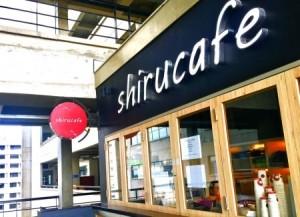 Shiru Cafe offers free coffee for data