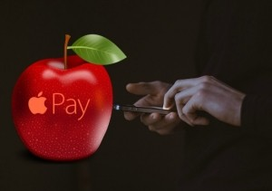 Pulse Network debit card research