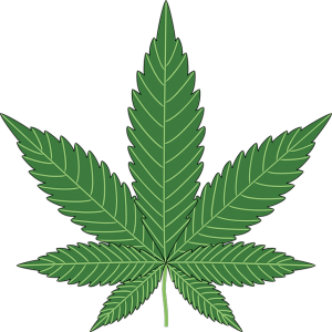 Canadian cannabis sales growing
