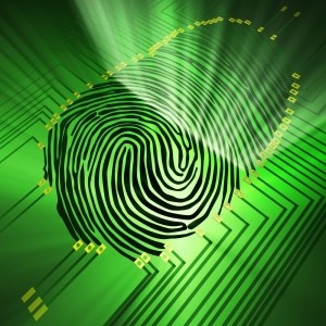 fingerprint payments
