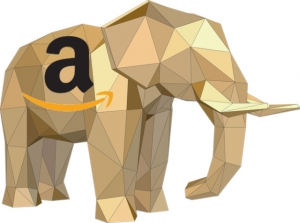 Amazon is the dominant e-commerce leader